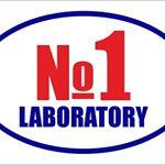 Лаборатория N: 1